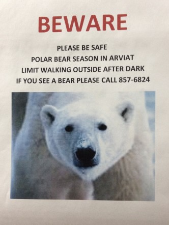 Last one spotted in Arviat? Two weeks ago.