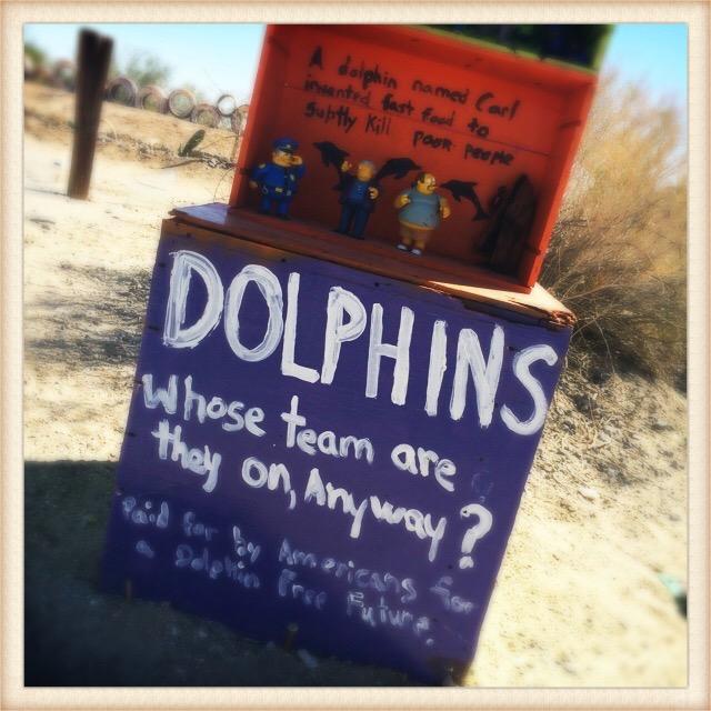 East Jesus dolphins