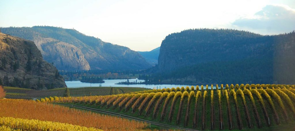 The home page photo from Blue Mountain Winery http://www.bluemountainwinery.com